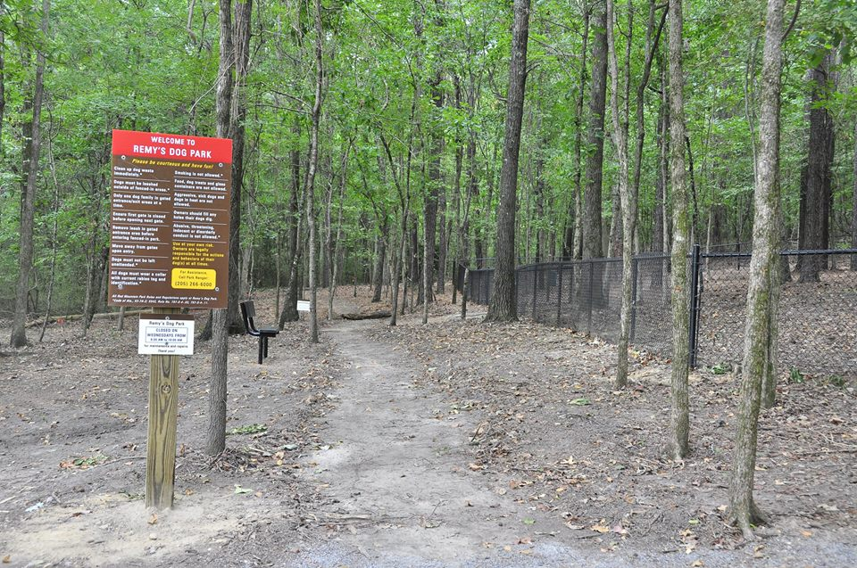 Remy's Dog Park paths